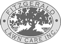 Joe Sempf – Fitzgerald Lawn Care Inc